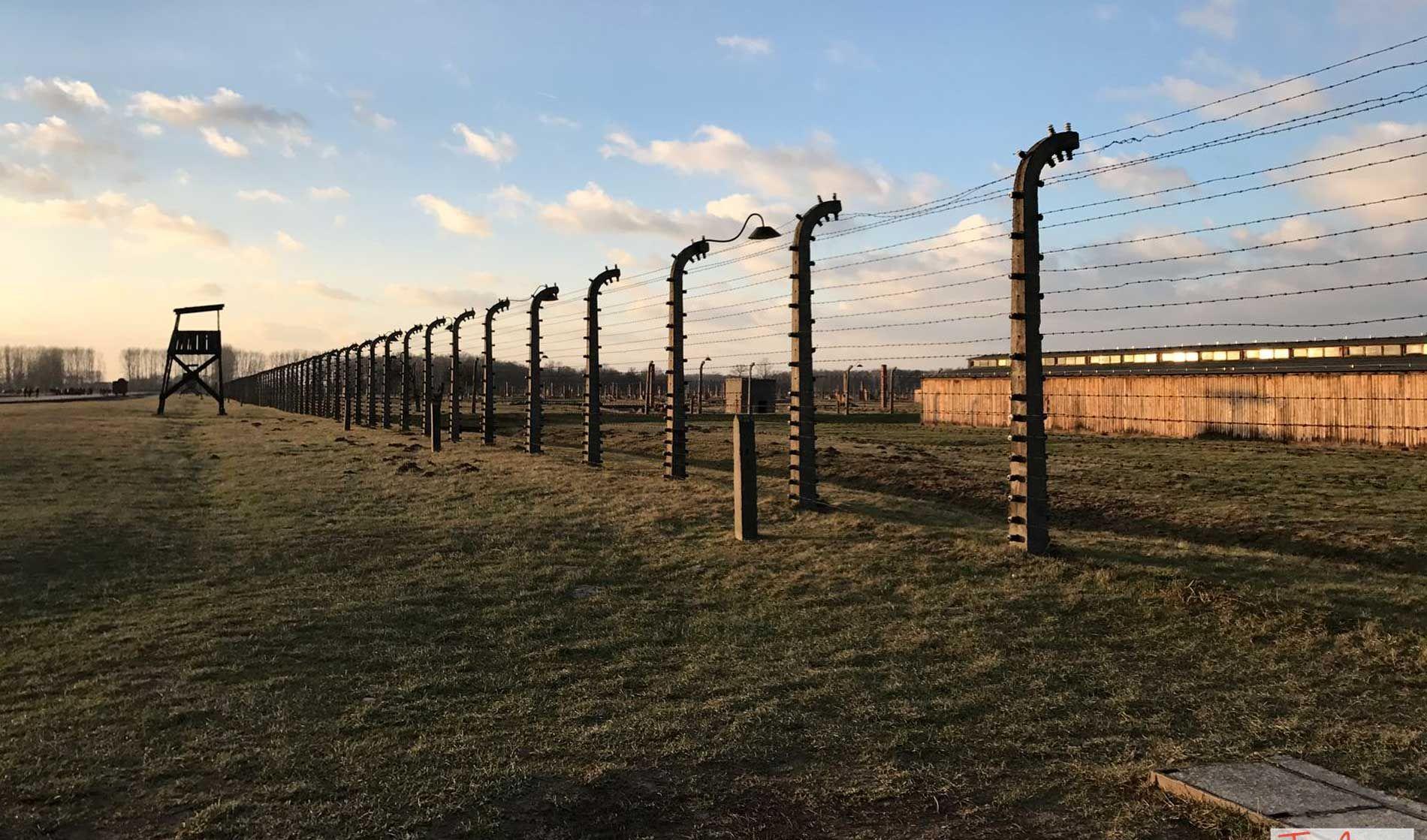 La recinzione di filo spinato a Birkenau