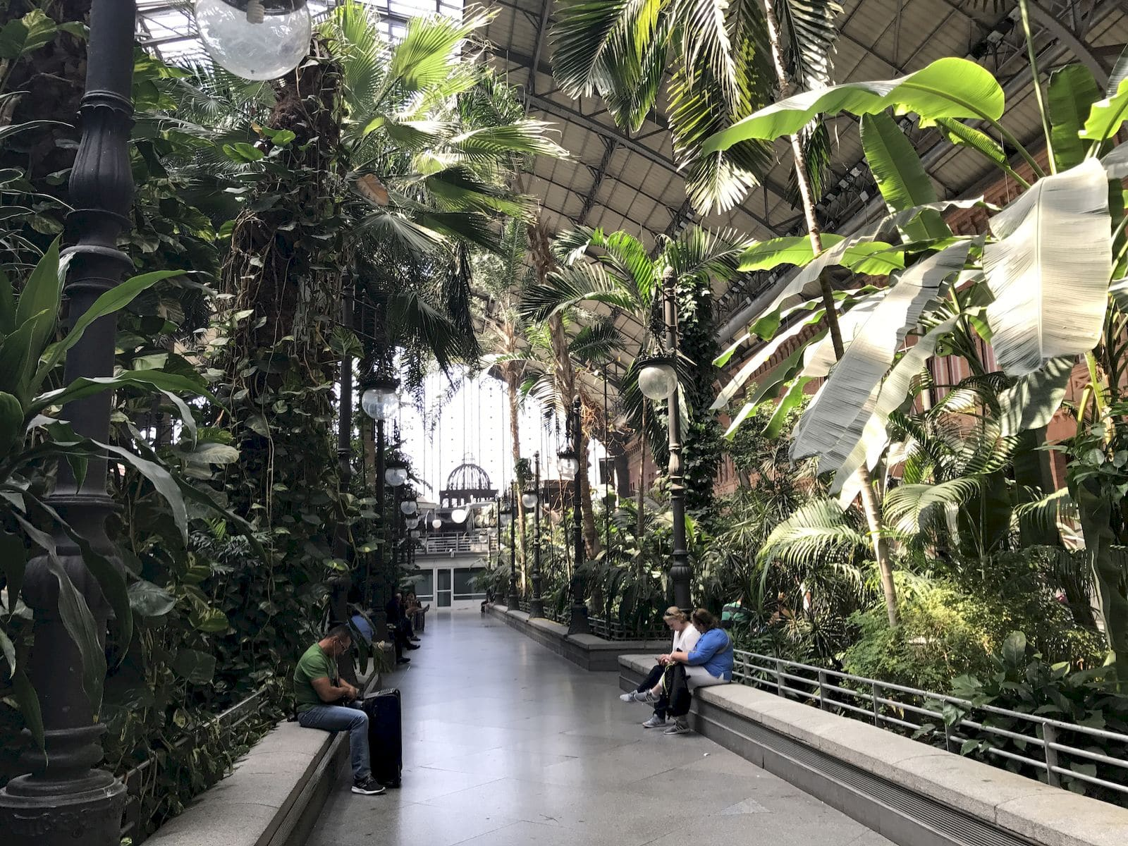 Giardino tropicale alla stazione Atocha