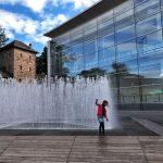 Norimberga la fontana davanti al Museo nuovo