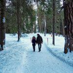 Passeggiando tra i boschi di Pontresina