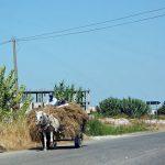 Viaggi on the road Europa -Balcani