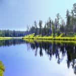 Le acque immobili di un fiume