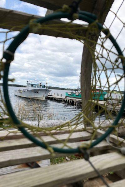 barca vista da una rete