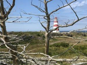 Il faro di Brier island