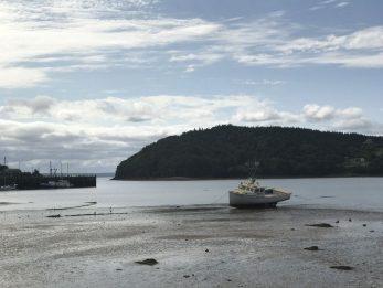 Siti di incontri gratuiti in Halifax Nova Scotia