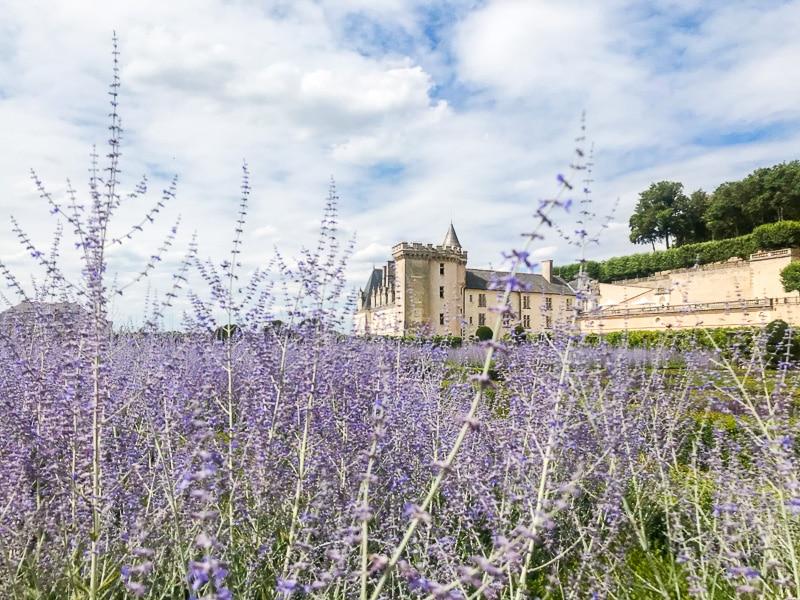 Il castello di Villandry dai giardini