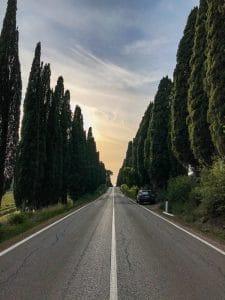 Il viale di San Guido al tramonto