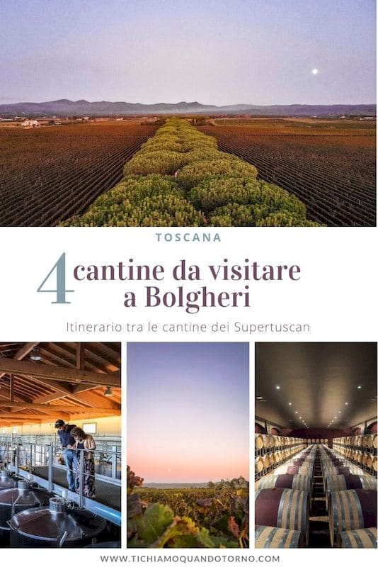 cantine supertuscan