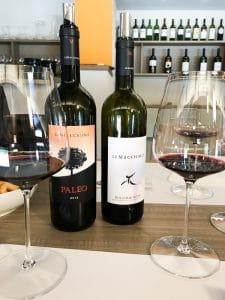 Degustazione dei vini di Le Macchiole