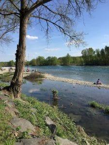 Il Parco del Ticino