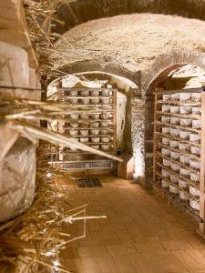 I formaggi stagionano sulla paglia