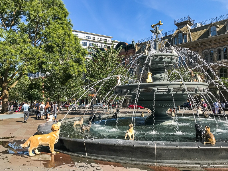 La Dog Fountain di Toronto