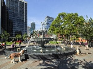 La Dog Fountain a Toronto