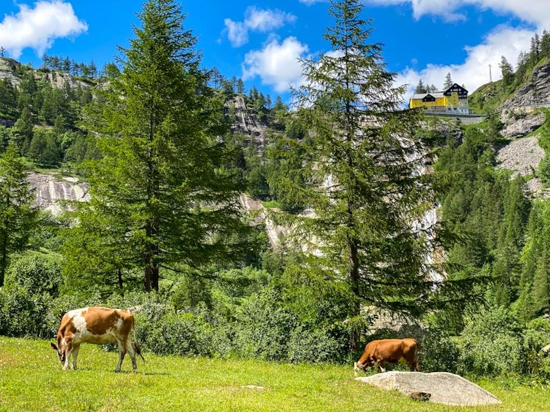 Val Formazza: cascate del Toce e al lago di Morasco
