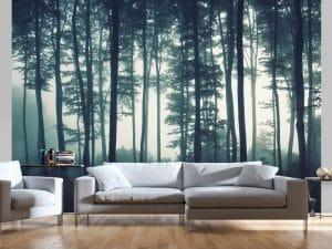 Il bosco in camera
