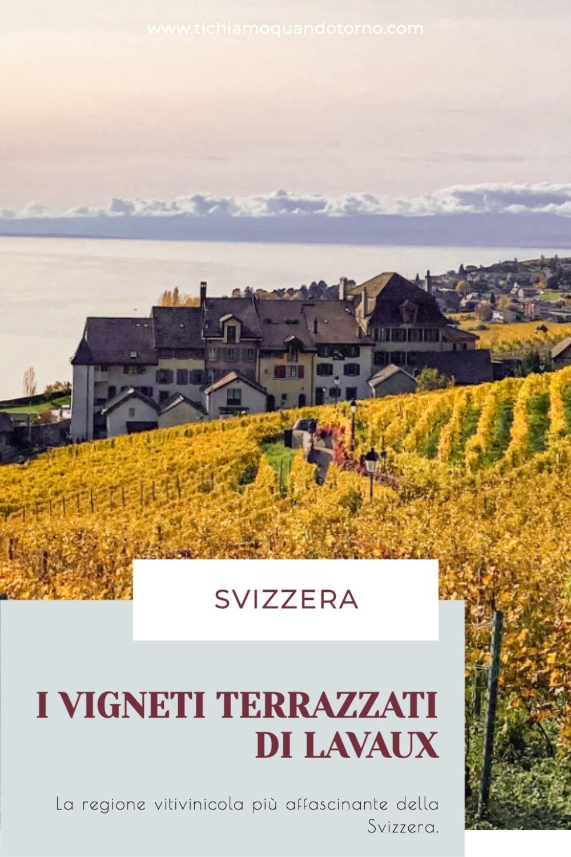I vigneti terrazzati di Lavaux in Svizzera