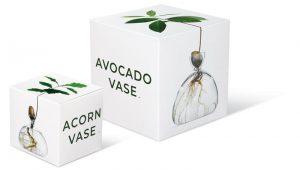Il packaging di Avocado e Acorn Vase