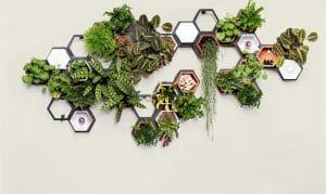 composizione di vasi a parete