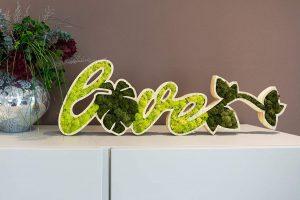 Moss trend: oggetti d'arredo vegetali