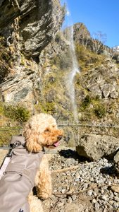 Leila guarda la cascata del Sajont