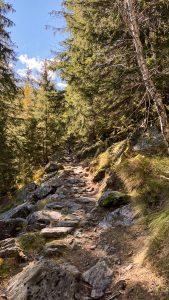 Il sentiero intorno al Lago di Campliccioli