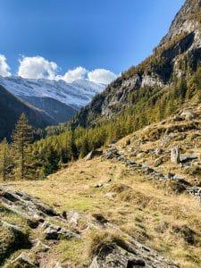 Il sentiero per l'Alpe Granarioli