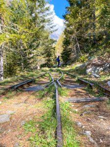 Le rotaie della ferrovia Decauville a Campliccioli